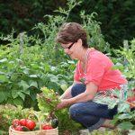 Start Your Own Vegetable Garden