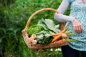 growing-your-own-vegetables