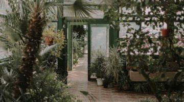 Eco-Friendly Home Backyard