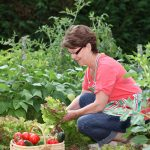 Start Your Own Vegetable Garden