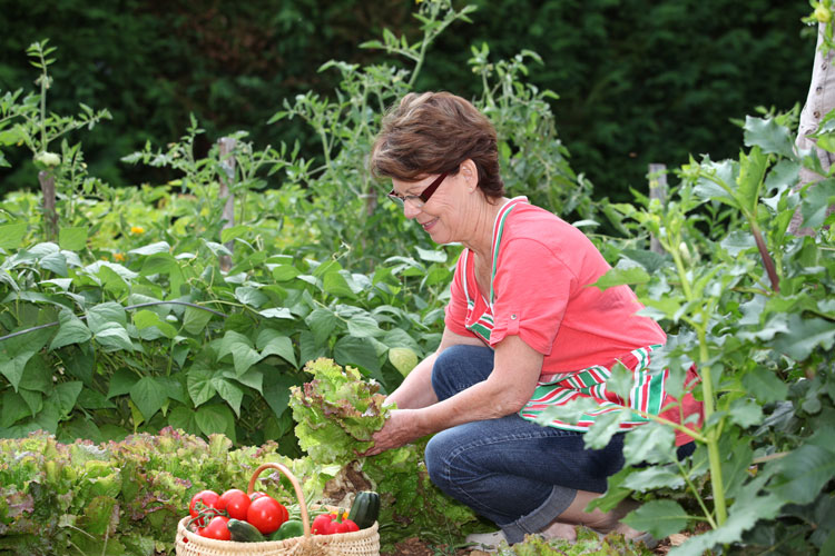 Lady-working-in-vegetable-garden