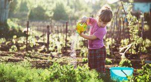 child-growing-a-vegetable-garden